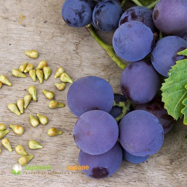 Екстракт от гроздови семки - за здраво сърце