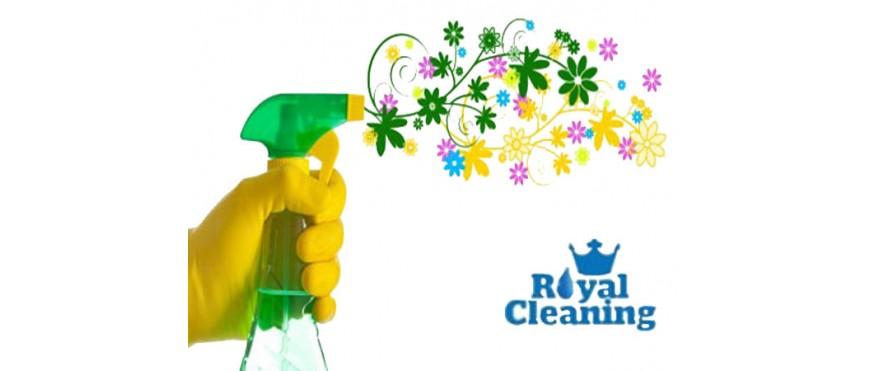 Екологично чистене и пране
