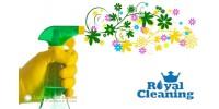 Екологично почистване